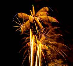 2014_01_01_Neujahrsfeuerwerk Interlaken_02