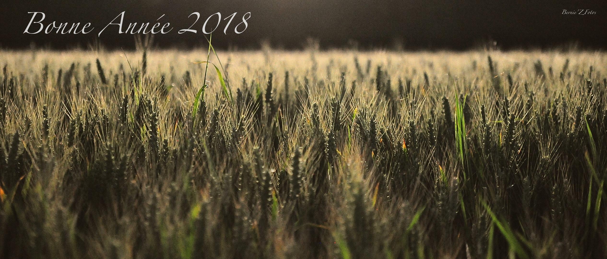 2018 la bonne graine