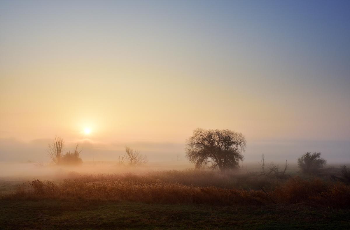 20181018 Nebel am Deich