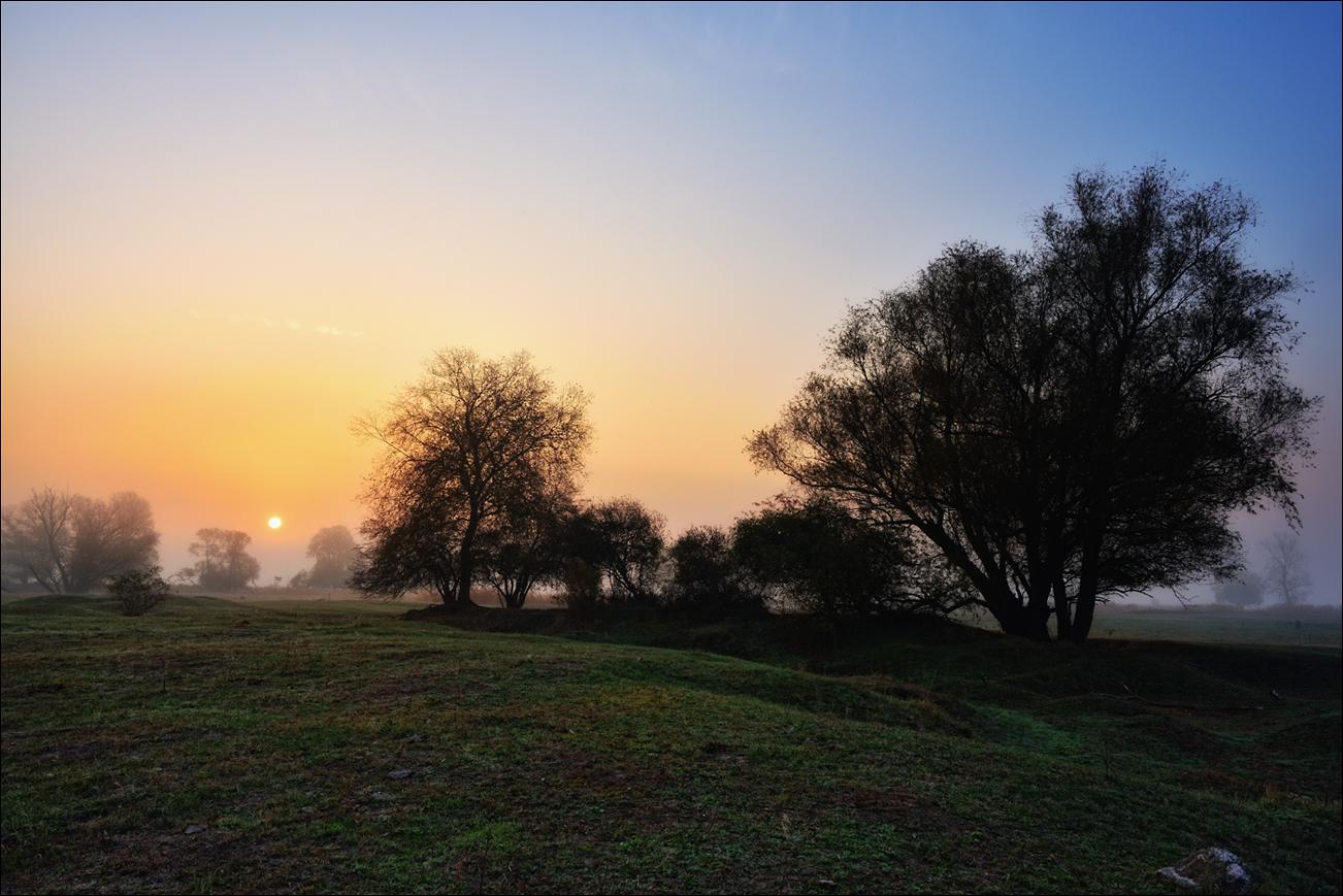 20181018 Nebel auf den Oderwiesen