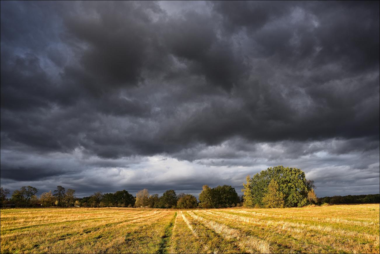 20181025 Herbstwolken über Wiese