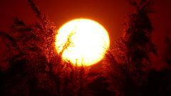 20200422 Himmelpfort Sonnenuntergang (8)