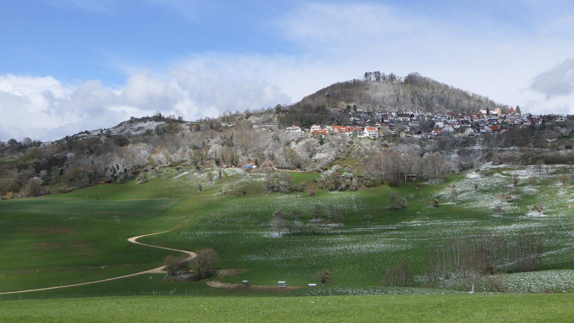 2021-04-06; Hohenstaufen
