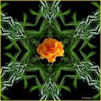 2021-04-07-Apophysis mit Rose