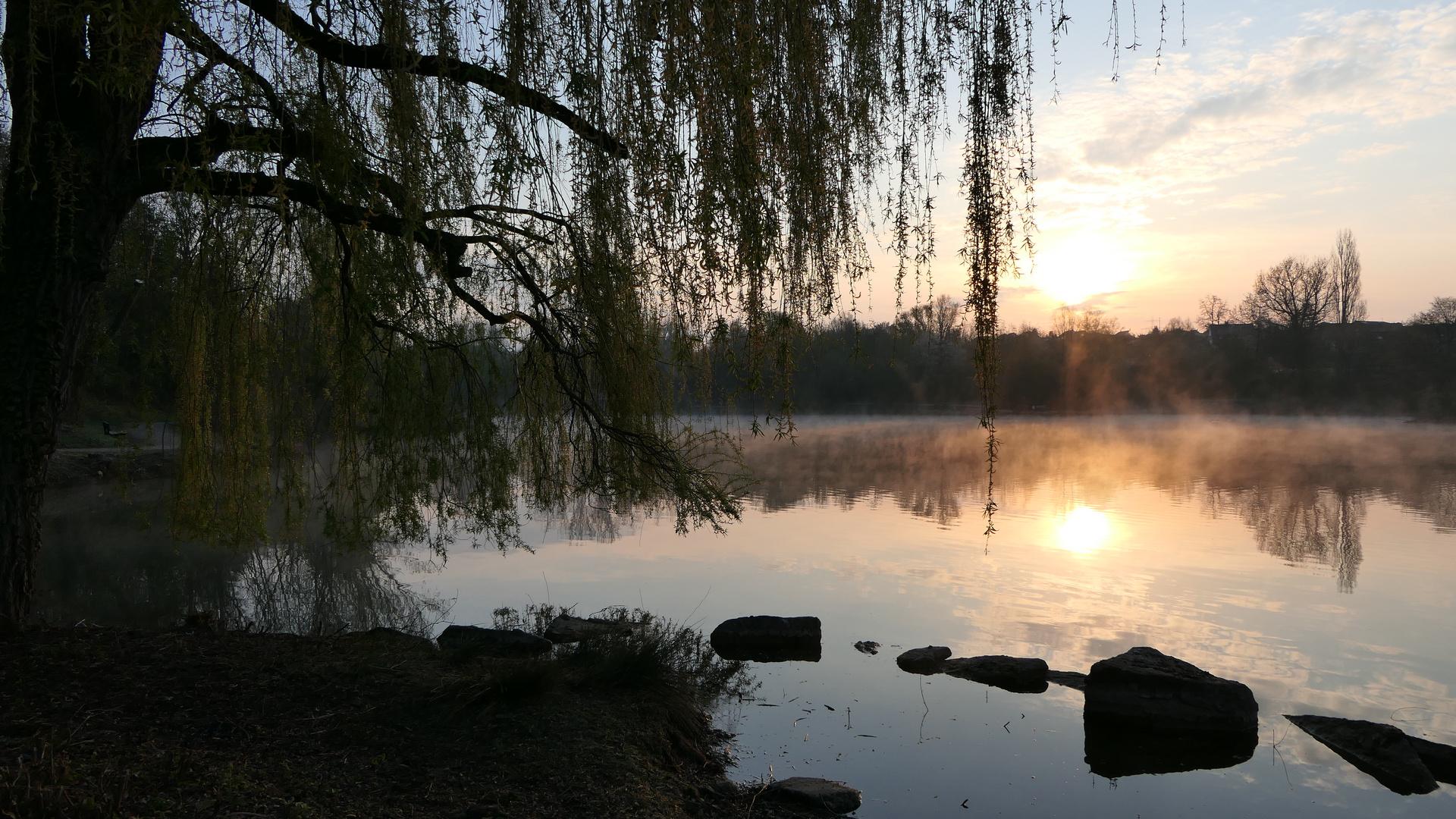 2021-04-13; Wendlingen; Schäferhauser See; Morgenstimmung