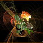 2021-04-21 Apophysis mit Rose als Mittwochsblümchen