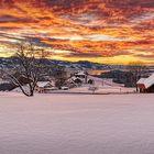20210119_Winterwonderland_3
