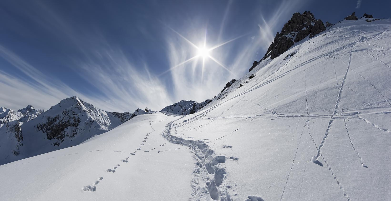 2046F- 48F  Weg in den Berg