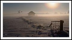 2102_0110 morgens in der Heide