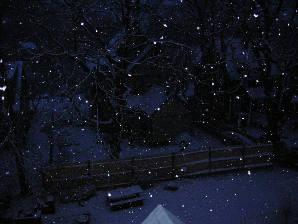 23|01|06 la (mia prima vera) neve