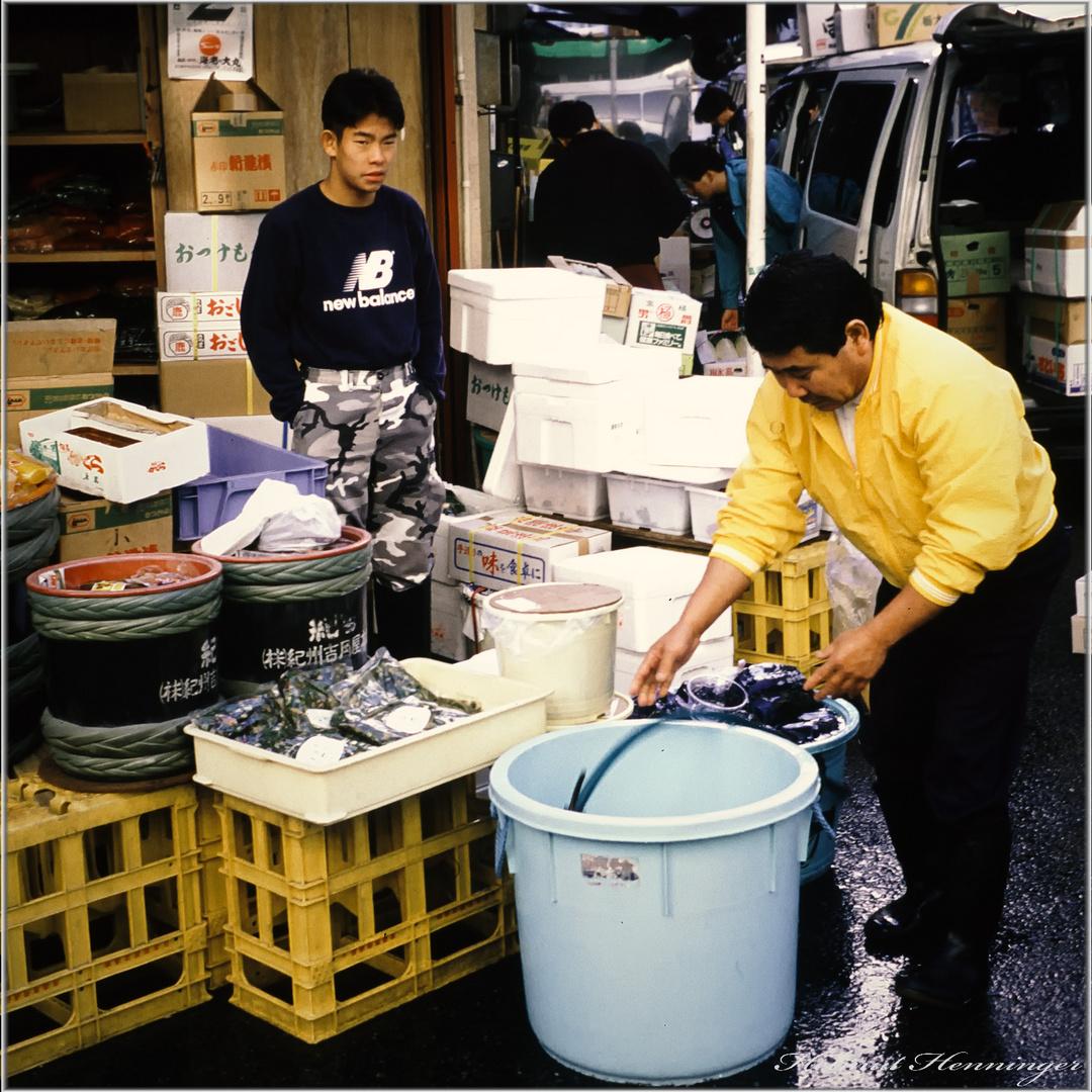 2439 Tokio 92-Fischhalle