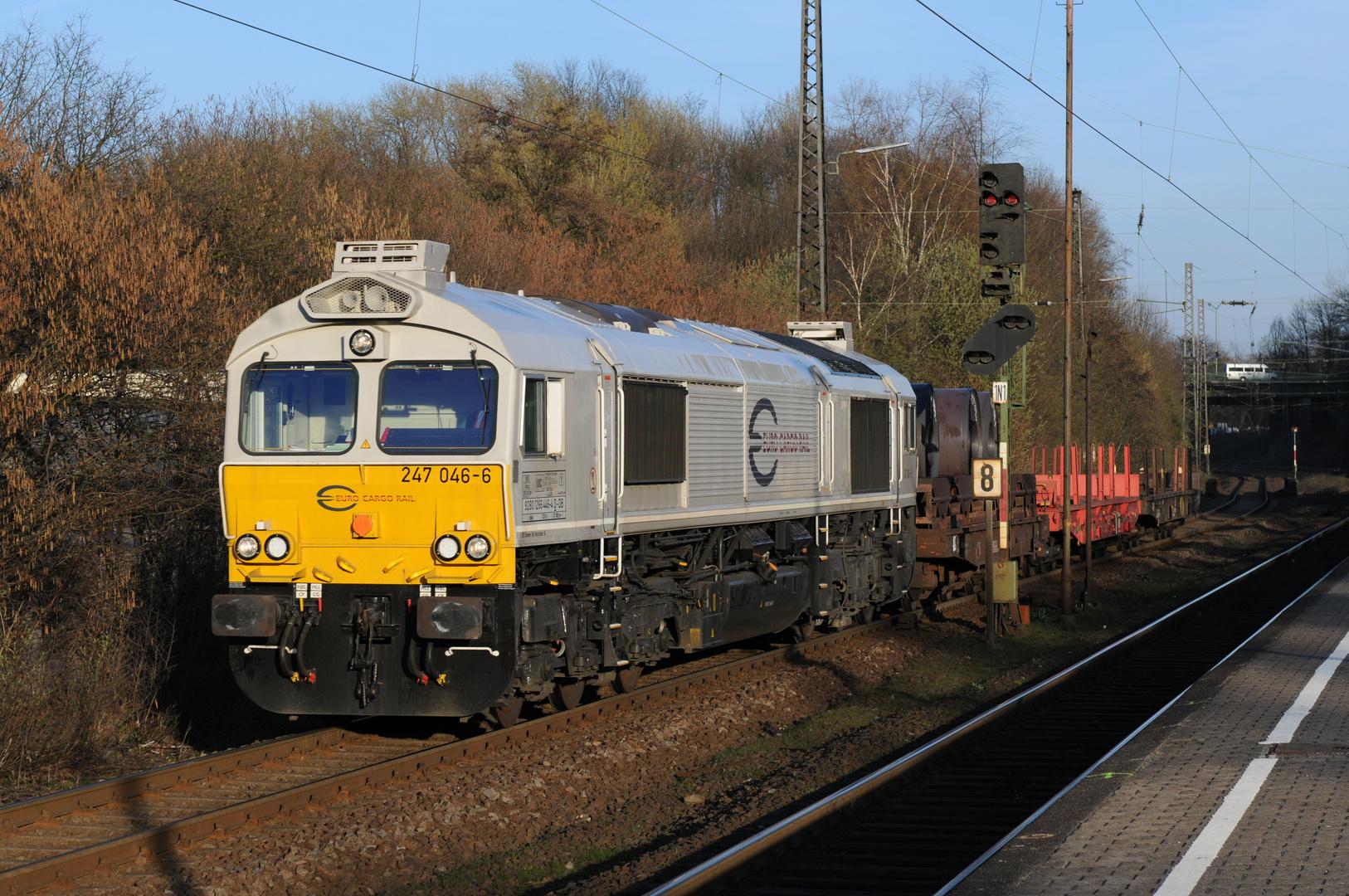 """247 046-6 , Class 77 der """"Euro Cargo Rail"""" in Essen - Bergeborbeck"""