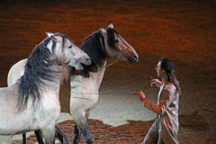 2.Bild, Equitana HopTop Show