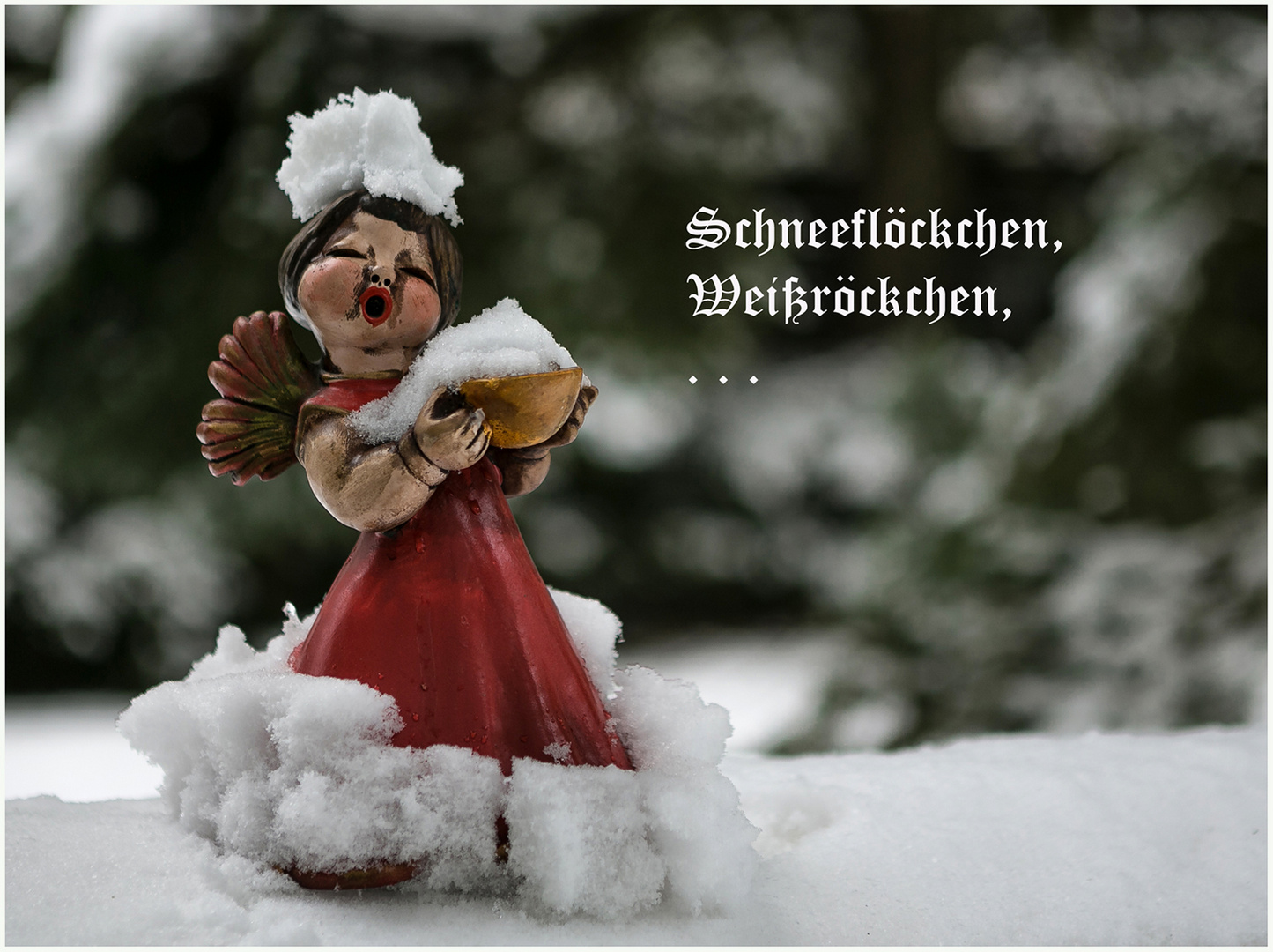 3 Advent Foto Bild Winter Jahreszeit Advent Bilder