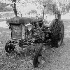 (3) Drei alte Traktoren in  Südafrika ...