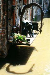 3 - Treviso citta' d'acqua