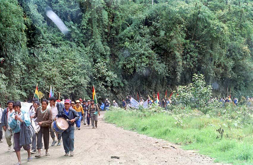 3.000 Kokabauern auf dem langen Fußweg aus den Yungas zu einer Demo nach La Paz