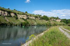 36-Naturschutzgebiet Zugwiesen am Neckartalradweg