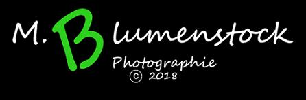 M.Blumenstock - Photographie