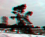 3D Heidelandschaft ...