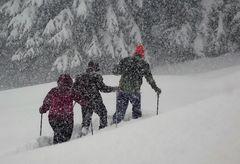 3er Gruppe Höfle19 Schneetreiben