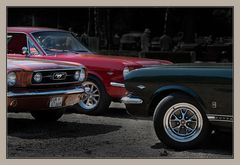 3x Mustang