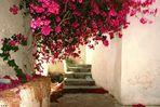 4. Impressionen Santorini