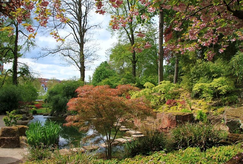 4 - Japanischer Garten