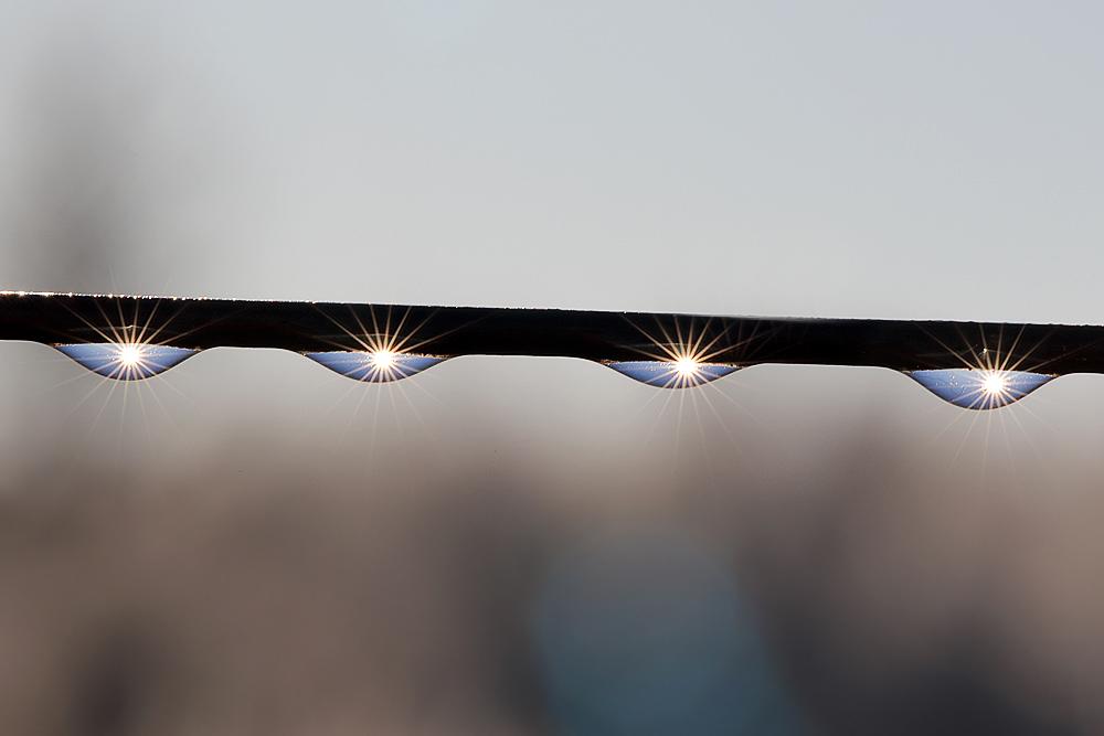 4 kleine Sonnen ...