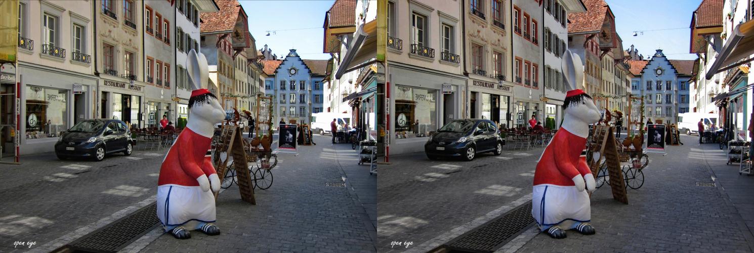 4. _ Osterhase in Aarau / Kt. AG / Schweiz _ X View _