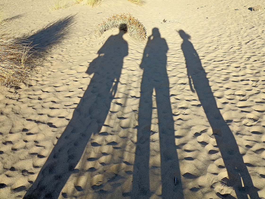 4 Schatten, einer gekrönt / 4 ombre, una incoronata