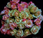 43 Roses.