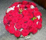47 rote Rosen ...... siehe unten !