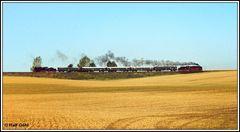 50 849 und der Rollwagen 38 205 auf Sonderfahrt in Sachsen