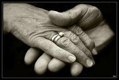 50 Jahre Hand in Hand