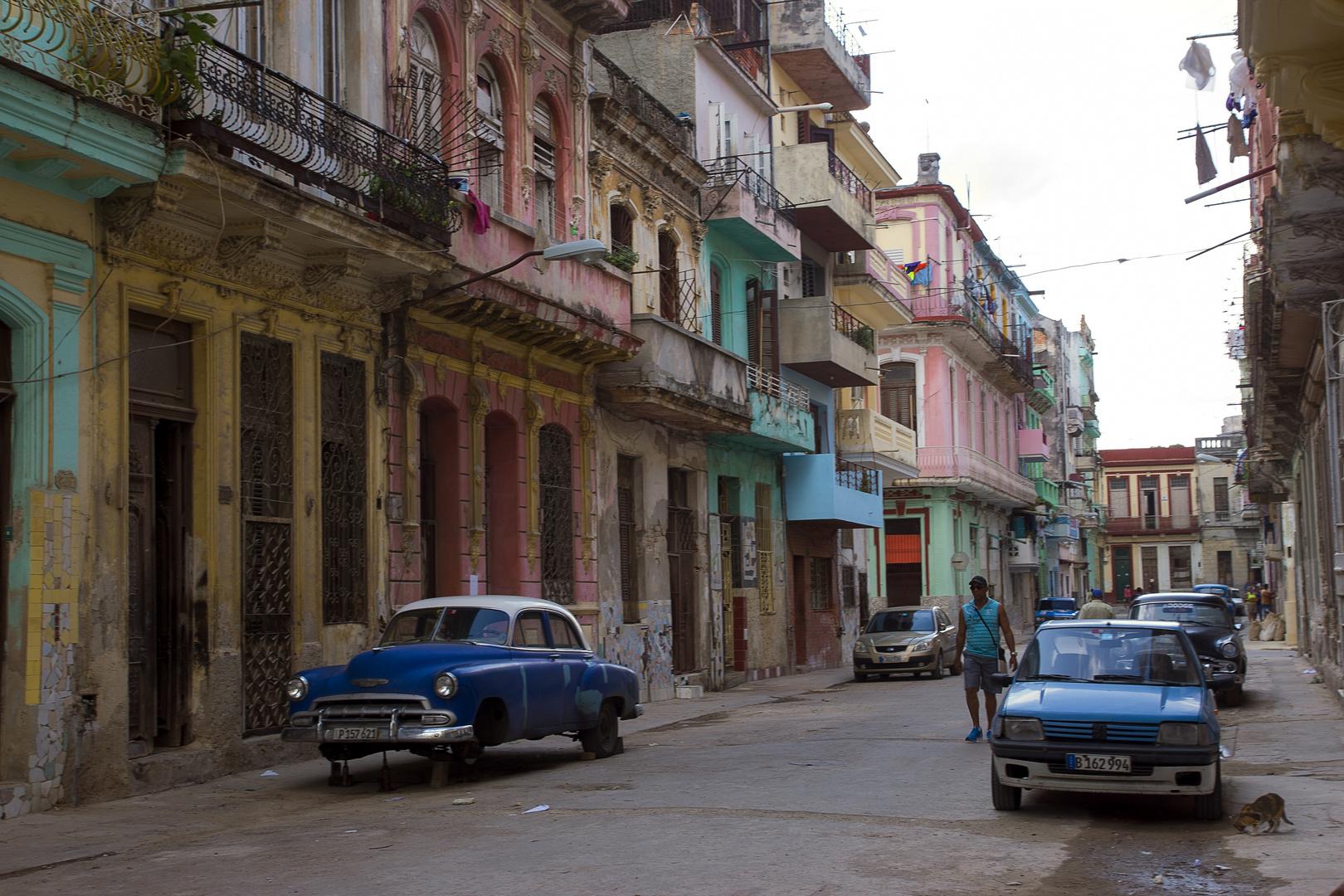 6 Havanna (48)