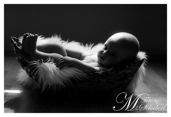 6 Monate alt und trotzdem sehr brav :)