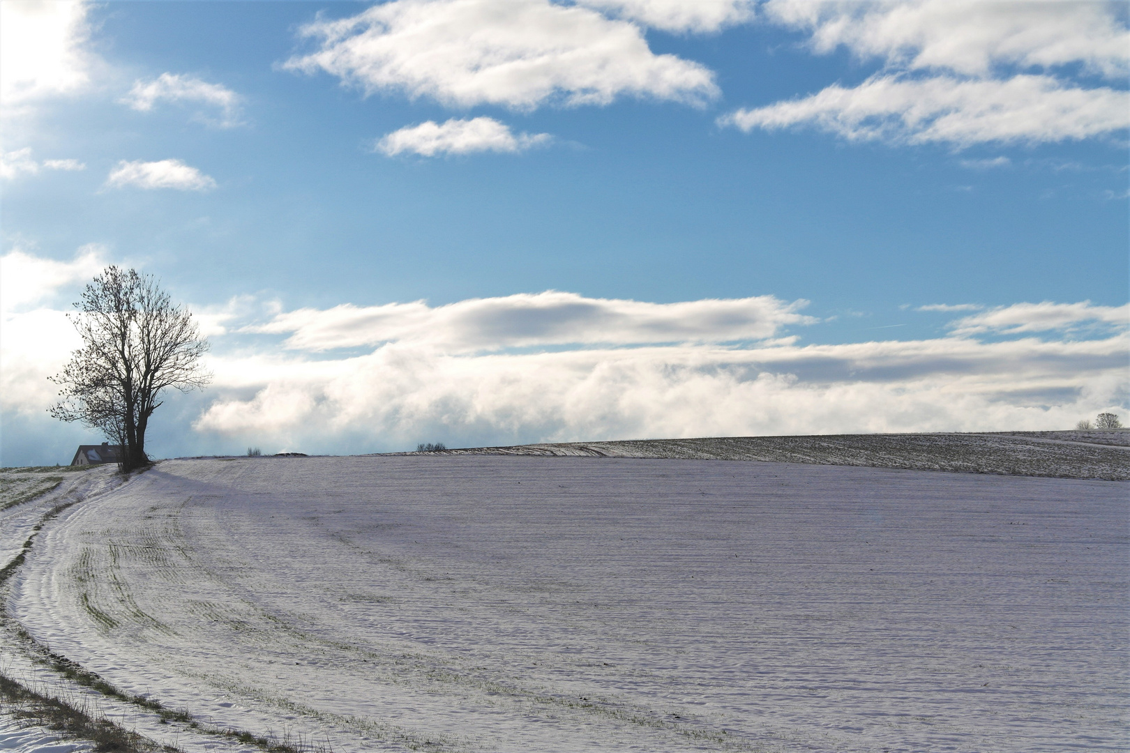 6.1.2019 Weiß auf Feldern unter  weißen Wolken  im Himmelsblau