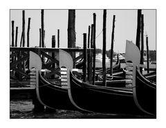 #64 - Venice 04