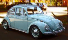 64er Käfer