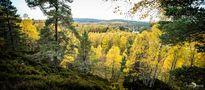 Schottland - Highlands 028 von flashlens