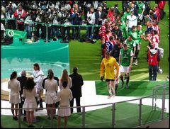 7 Pokalfinale 2010