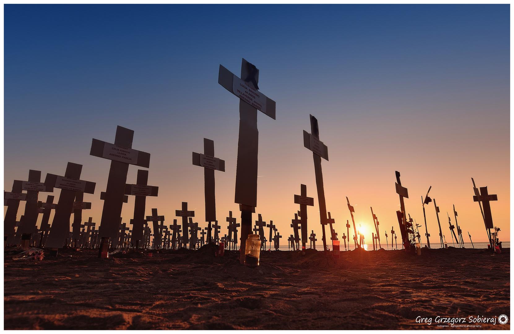 739  Crosses