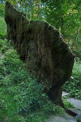 7537_Wachsender Felsen