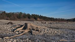 760791_Forggensee