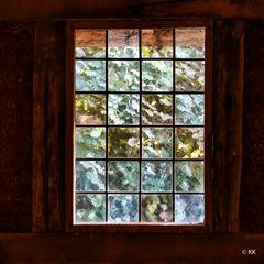 78 Fensterblick 2