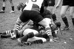 7er Rugby Frauen 3