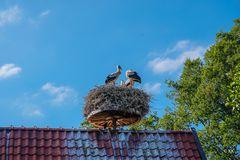 83 Wohnstube Familie Storch