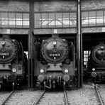90 Jahre Baureihe 01 - Dresdner Dampflokfest 2015 - Freitag 2