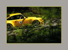 911 - Ab in die Natur